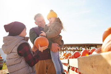Girl and brother with grandfather selecting pumpkins in pumpkin patch field