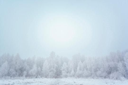 Halo over trees, Ural, Sverdlovsk, Russia