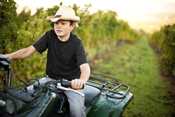 Boy driving quadbike through a vineyard