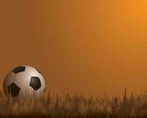 football - soccer ball