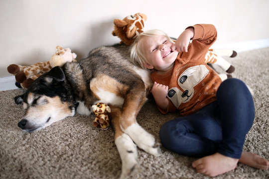 Young Child Playing with Her Pet German Shepherd Dog and Giraffe Stuffed Animals