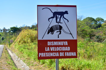 Monkey and Armadillo road crossing sign