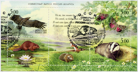RUSSIA - 2005: shows series Nature, Russia - Belarus Joint Issue