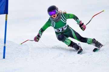 Wall Mural - Alpine Ski Racer