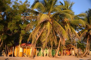 cabanes colorées  sur la plage de Bayahibe Wall mural