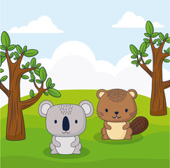 cute squirrel and koala in a forest, colorful design. vector illustration