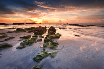 Sunset seascape with green moss on the ground at Kudat, Sabah Malaysia.