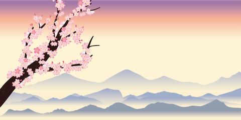 桜の木の背景~春のイメージの背景(夕方) 飾り枠 サクラと風景イラスト 背景