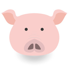 Flat icon with a pig