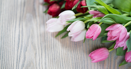 Tulips on wood background