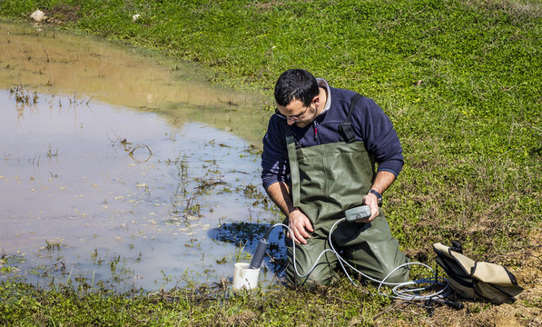 Scientist measuring environmental water quality in a wetland
