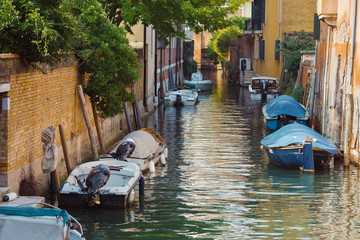 Poster Channel View of venetian narrow canal. Venice is a popular tourist destination of Europe.