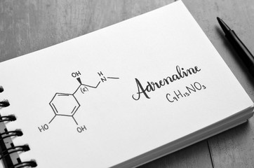 ADRENALINE Chemical Formula and Structure in Notebook
