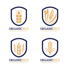organic rice logo sign with navy gold modern paddy rice in vintage frame border vector design