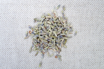 Dried soft herb lavender