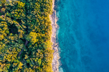 Coastal area with blue clear water and forest on land - aerial view taken by drone Fotomurales