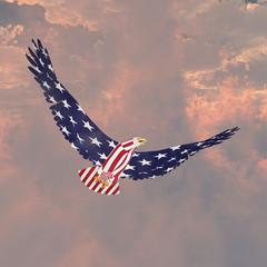 Fototapete - Freedom