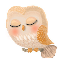 cute owl is sleeping