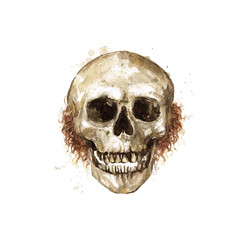 Human Skull - Male. Watercolor Illustration.