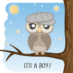 Ñute cartoon owl in a cap sitting on a tree branch.