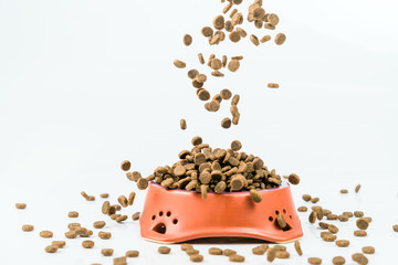 Ceramic bowl with dried pet food on white background
