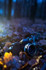 Vintage SLR camera lying on dead leaves in winter forest at dusk.