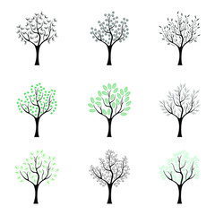 Set of trees. Vector set of trees in different style on white background.