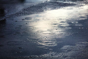 rain puddles on a pavement in city
