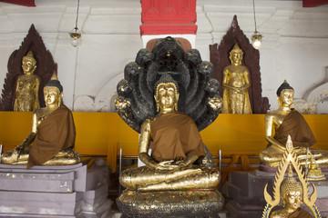 Thai people respect and praying buddha of Wat Phra Mahathat Woramahawihan in Nakhon Si Thammarat, Thailand