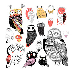 Vector cheerful collection of graphic owls on a white background.