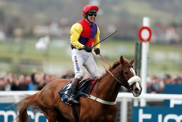 Horse Racing - Cheltenham Festival