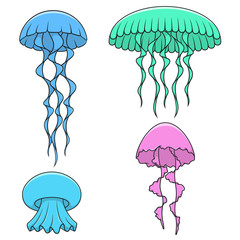Set of color illustrations with bright jellyfish. Isolated vector objects on white background.