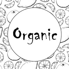 Black and white banner fruit sketch hand drawing simple minimal vector card