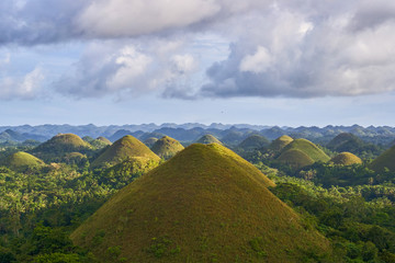 Canvas Prints Hill Famous Chocolate Hills view, Bohol Island, Philippines