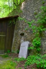 Haus, Tür, Holz, bauwerk, Wald, Mystik, Romantisch, Bäume, Gebäude, Schuppen, Schäune