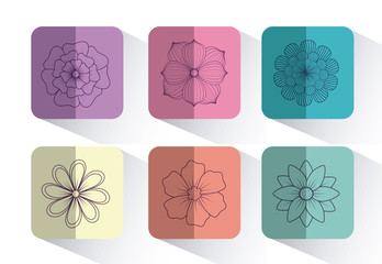 icon set of beautiful flowers over colorful squares and white background, vector illustration