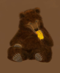 big brown bear sitting isolated on a brown background