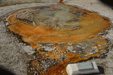 Tardy Geyser, Yellowstone National Park, Wyoming