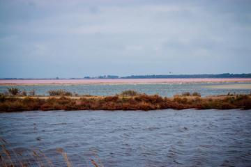 Les étangs près de Aigues Mortes en Camargue