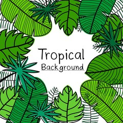 Hand Drawn Tropical Leaves Background.