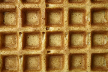 Close Up view of a Waffle texture