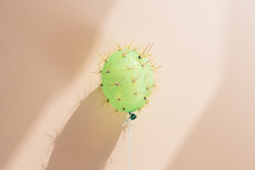 Balloon in disguise of cactus under dramatic light