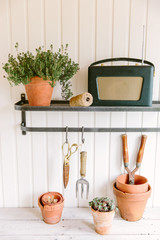 Shelf in a potting shed with gardening equipment.