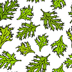 Botanical Seamless Endless Pattern of Green Curley Parsley Leaves. Background With Aromatic Herb. Fresh Cooking Salad Ingredient. Hand Drawn Illustration. Savoyar Doodle Style.