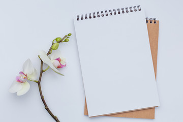 Notebooks with beautiful flower congratulations concept