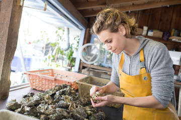 woman selling fresh oysters at farmers food market