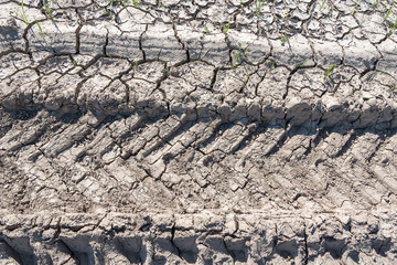 Dry and cracked clay soil.