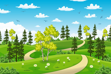 Wall Mural - Rual summer landscape with trees