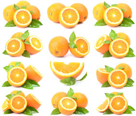 Orange fruit collection