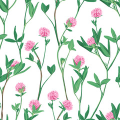 Floral seamless pattern with red clover.